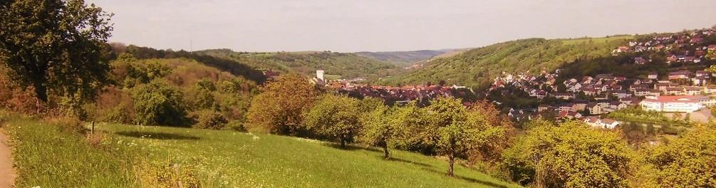 Schwäbischer Albverein   Ortsgruppe Niederstetten